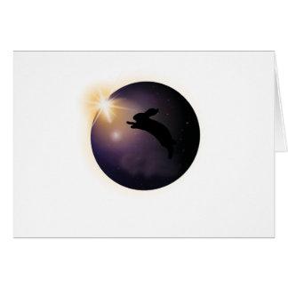 Total Solar Eclipse August 2017  rabbit Card