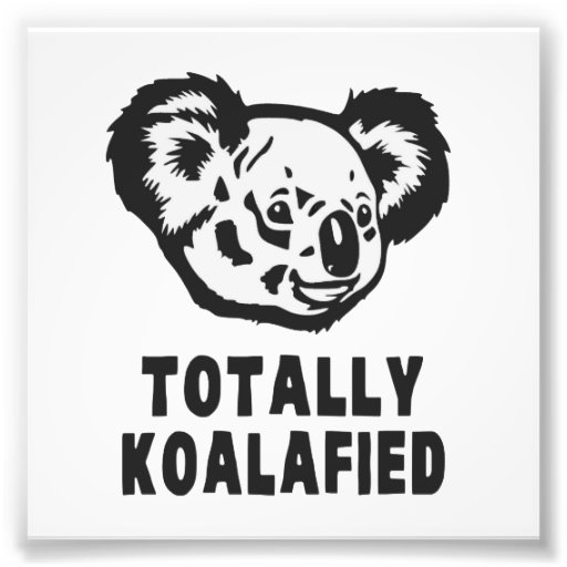 Totalement koala de Koalafied Impression Photographique