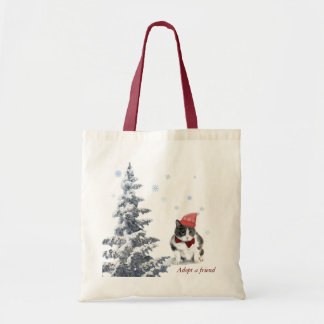 tote;  Felix, the cat, in January