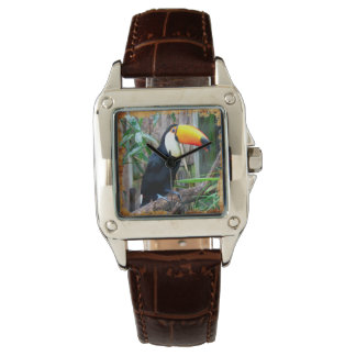 Toucan 5B Watch Options