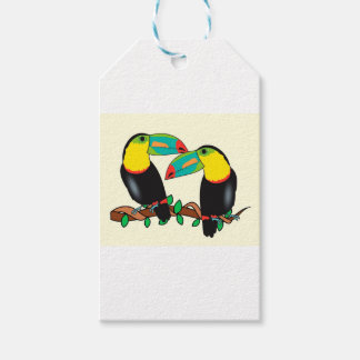 Toucan bird love art gift tags