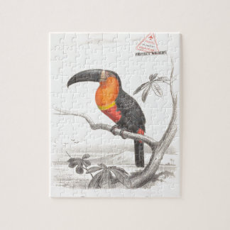 Toucan Bird Responsible Travel Art Puzzles