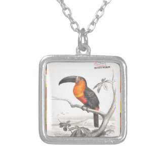 Toucan Bird Responsible Travel Art Silver Plated Necklace