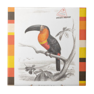 Toucan Bird Responsible Travel Art Tiles
