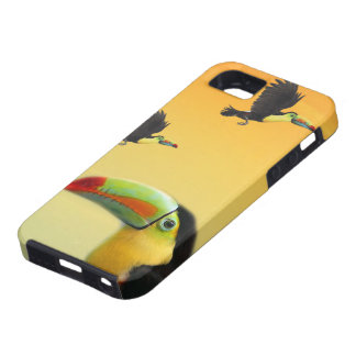 Toucan Birds iPhone 5 Cover
