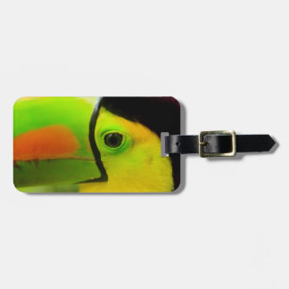 Toucan face close up, Belize Luggage Tag