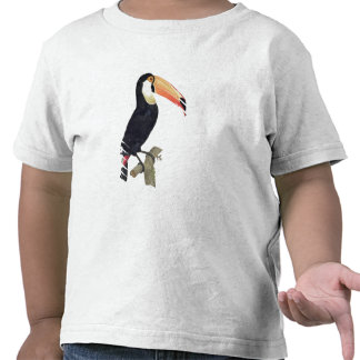 Toucan No.2, from 'History of the Birds of Paradis T Shirts