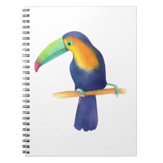 Toucan Notebook