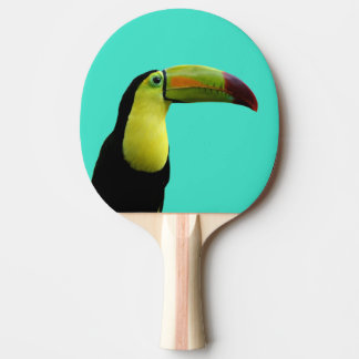 Toucan tropical animal colorful photo ping pong paddle