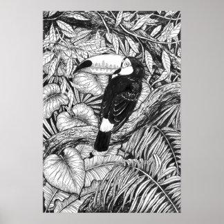 Toucan tropical garden poster