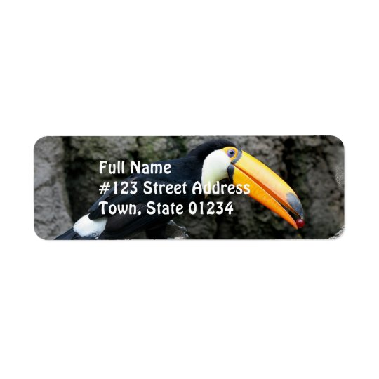 Toucan with Berry Return Address Label