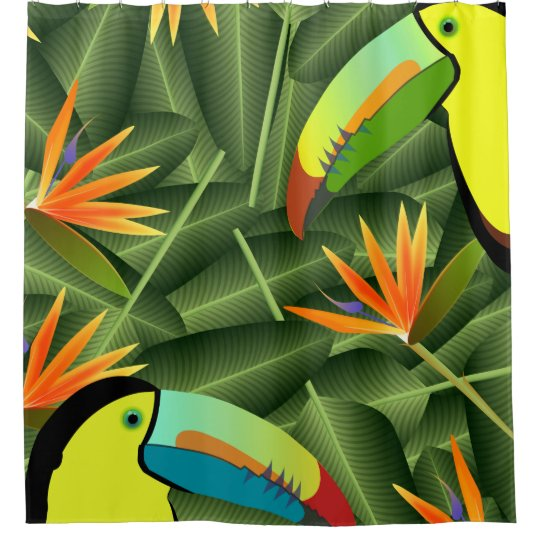 Toucans and Birds of Paradise