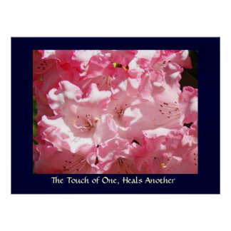 Touch of One Heals Another art print Pink Rhodies
