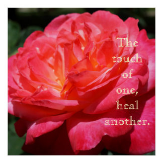 Touch of one heals another Healing Rose art prints Poster