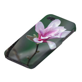 Touch of Spring! Covers For iPhone 4