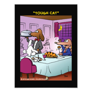 """Tough Cat"" Photographic Print"