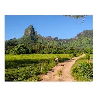 Tourist cycling on tropical Moorea Postcard