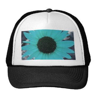 Tournesol bleu de jardin casquettes de camionneur