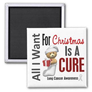 Tous que je veux pour le cancer de poumon de Noël Magnet Carré