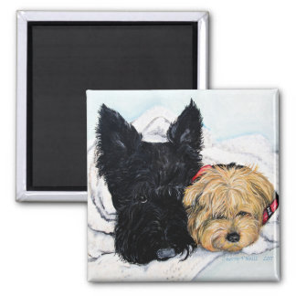 Toweling Off! Scottie and Yorkie Buddies Magnet