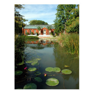 Tower Grove Park Lily Pond Postcard