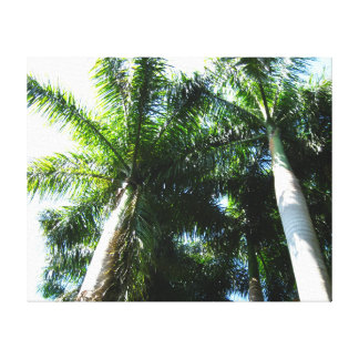 Tower of Palms Canvas Print