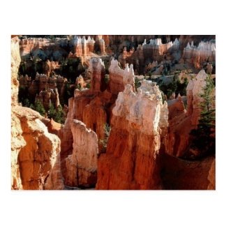 Tower River, Bryce Canyon Postcard