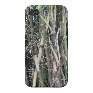 Towering Bamboo Phone Case For iPhone 4