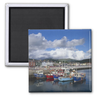 Town and Harbour, Dingle, County Kerry, Magnet