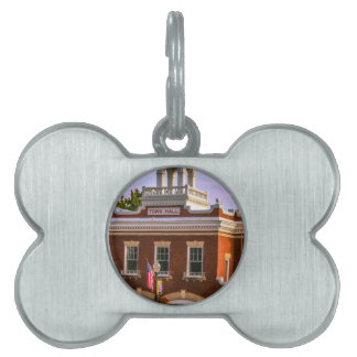 Town Hall Pet Name Tag