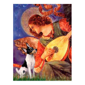 Toy Fox Terrier - Mandolin Angel Postcard