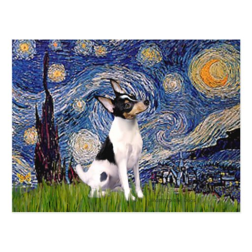 Toy Fox Terrier - Starry Night Post Cards