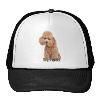 toy poodle breeds trucker hat