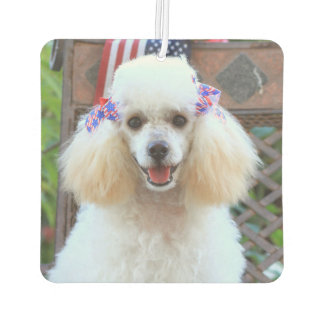 Toy Poodle car air freshner Car Air Freshener