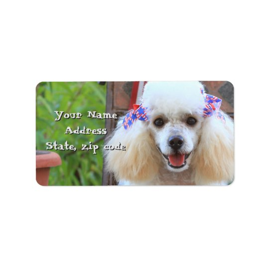 Toy Poodle puppy address labels