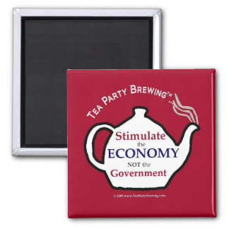 TP0104 Stimulate Economy Not Government Magnet