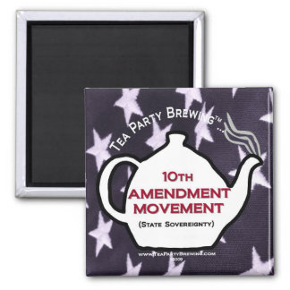 TP0109 10th Amendment Movement Magnet