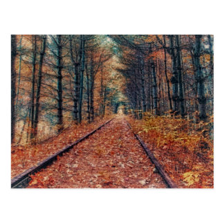 Track Through a Forest Postcard