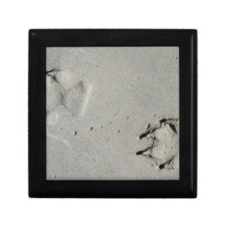 Tracks of a big dog on the sand gift box