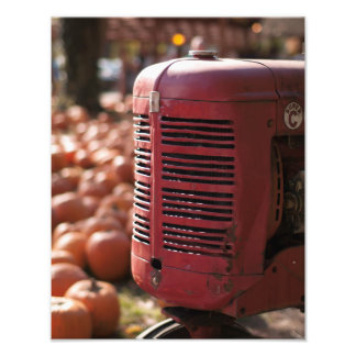 Tractor in Pumpkin Patch Photo Print