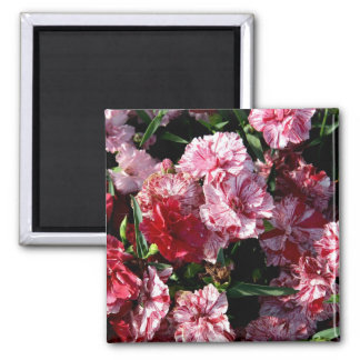 Traditional Wedding Carnations Magnet