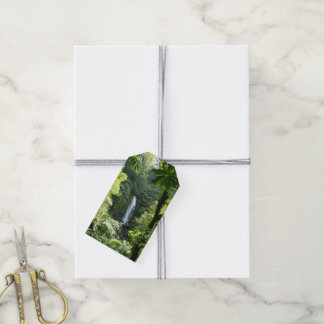 Trafalgar Falls Tropical Rainforest Photography Gift Tags