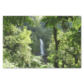 Trafalgar Falls Tropical Rainforest Photography Tissue Paper