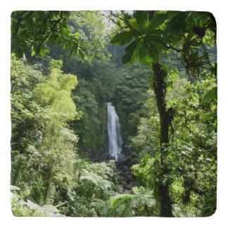 Trafalgar Falls Tropical Rainforest Photography Trivet