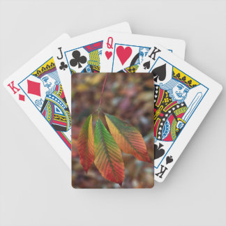Traffic Light Leaves Bicycle Playing Cards