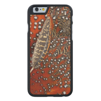 Tragopan feathers close-up carved® maple iPhone 6 case