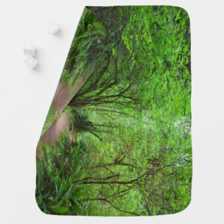 Trail in Redwood Forest Baby Blanket