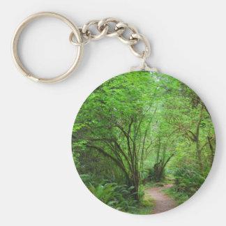 Trail in Redwood Forest Basic Round Button Keychain