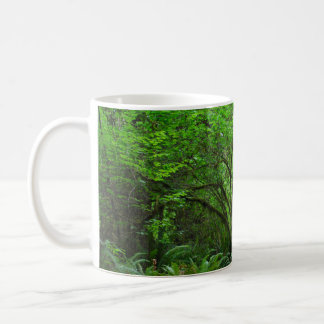Trail in Redwood Forest Coffee Mug