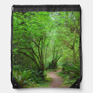 Trail in Redwood Forest Drawstring Bag